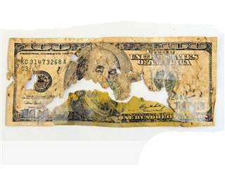 poop_money